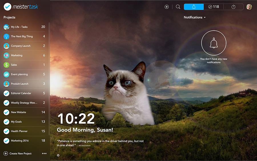 meister task screenshot